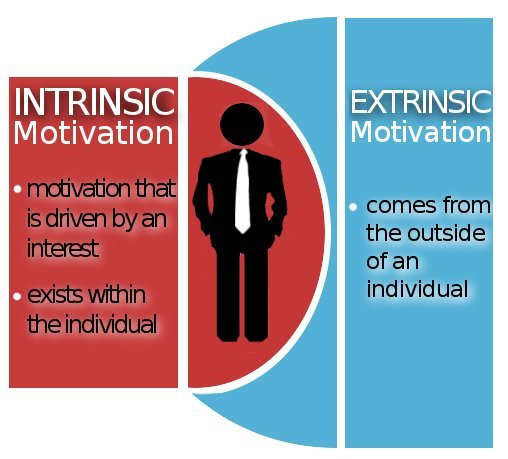 extrinsic work motivation questionnaire