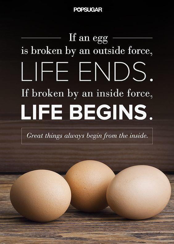 ————鸡蛋