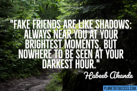 Fake friends are like shadows quote