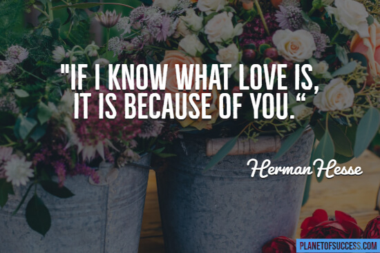 If I know what love is quote