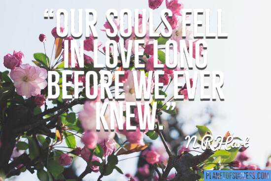 Our souls fell in love quote