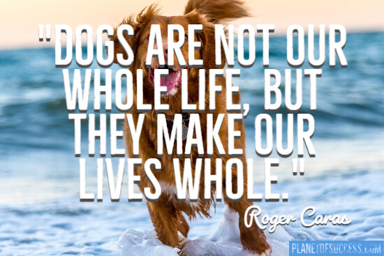 Dogs are not our whole life quote