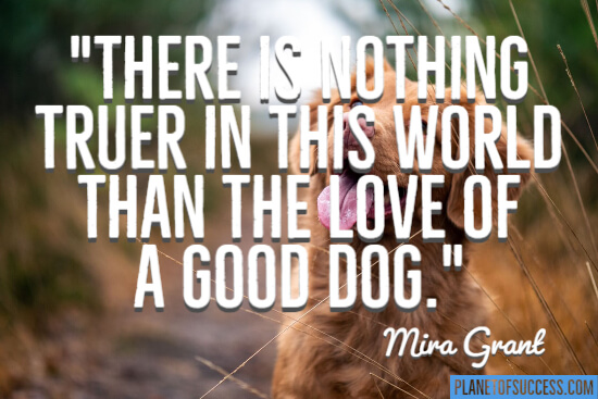 The love of a good dog quote