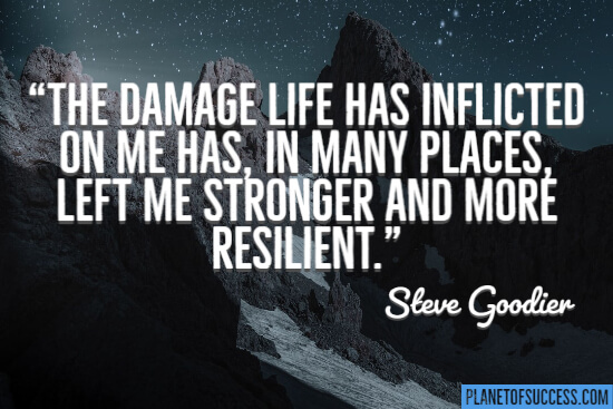 The damage life has inflicted on me has left me stronger and more resilient quote