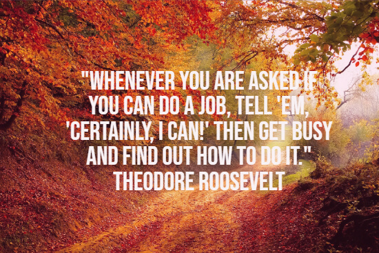 Theodore Roosevelt famous quote