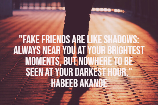 Fake friends like shadows