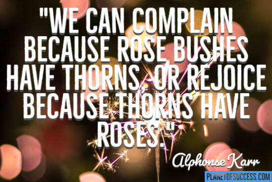 We can complain because rosebushes have thorns quote