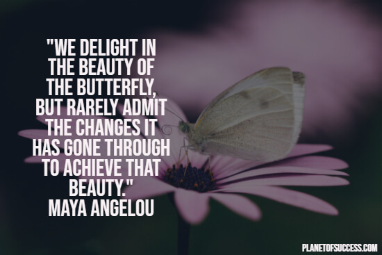 Transformational change of a butterfly