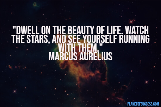 The beauty of life quote