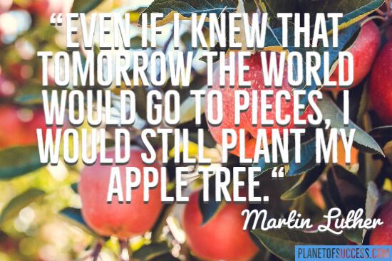 把我的苹果树给苹果